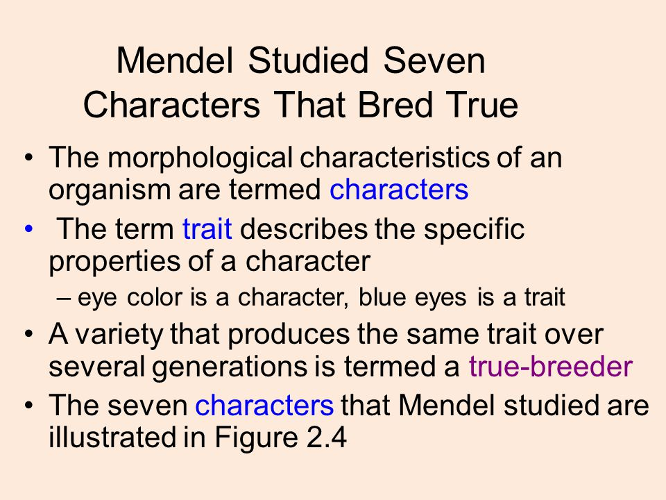 Mendel Studied Seven Characters That Bred True The morphological characteristics of an organism are termed characters The term trait describes the specific properties of a character –eye color is a character, blue eyes is a trait A variety that produces the same trait over several generations is termed a true-breeder The seven characters that Mendel studied are illustrated in Figure 2.4