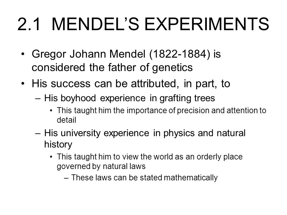 2.1 MENDEL'S EXPERIMENTS Gregor Johann Mendel (1822-1884) is considered the father of genetics His success can be attributed, in part, to –His boyhood experience in grafting trees This taught him the importance of precision and attention to detail –His university experience in physics and natural history This taught him to view the world as an orderly place governed by natural laws –These laws can be stated mathematically
