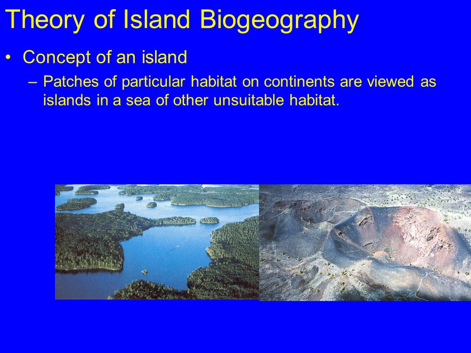 Theory of Island Biogeography Concept of an island –Patches of particular habitat on continents are viewed as islands in a sea of other unsuitable hab