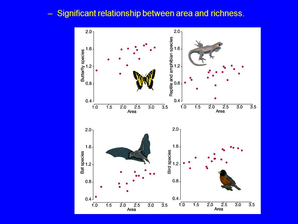 –Significant relationship between area and richness.