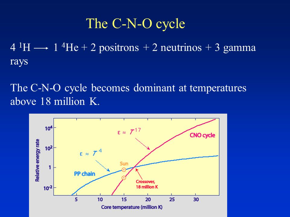 The C-N-O cycle 4 1 H 1 4 He + 2 positrons + 2 neutrinos + 3 gamma rays The C-N-O cycle becomes dominant at temperatures above 18 million K.