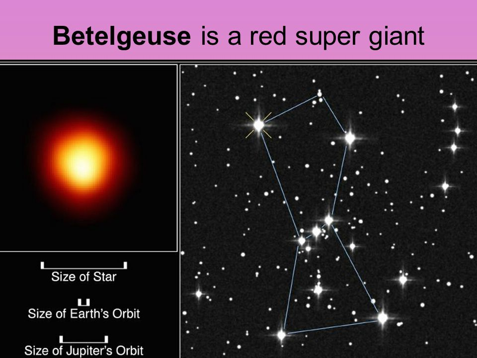 Betelgeuse is a red super giant