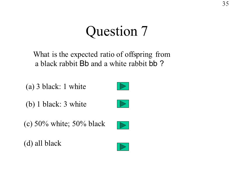 Question 7 What is the expected ratio of offspring from a black rabbit Bb and a white rabbit bb .