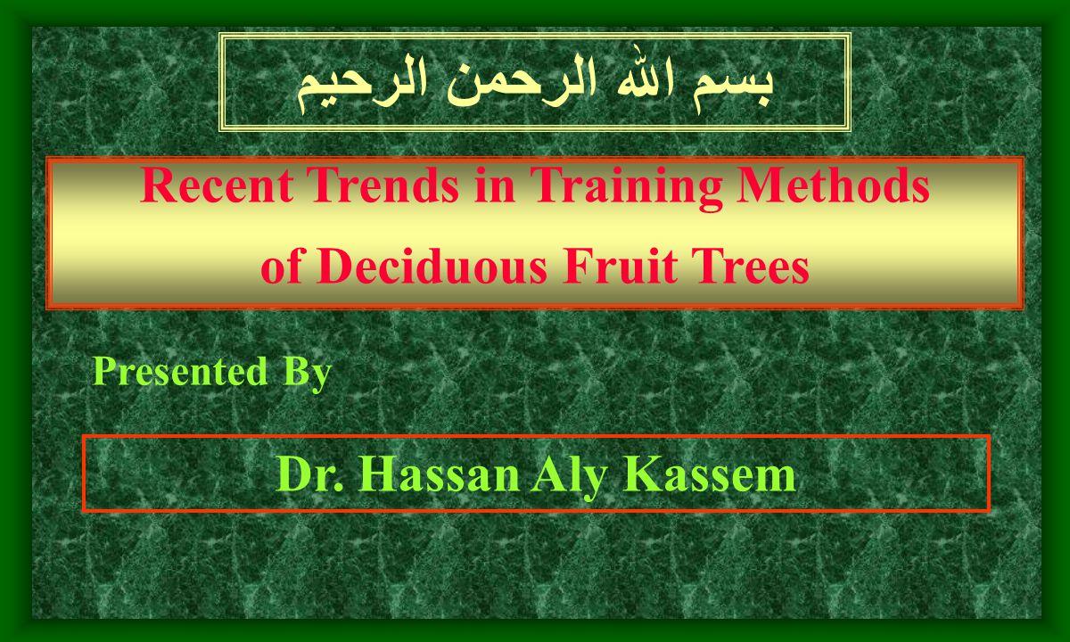 معيد – قسم البساتين ( الفاكهة ) - كلية الزراعة جامعة الاسكندرية عام 1981 م.