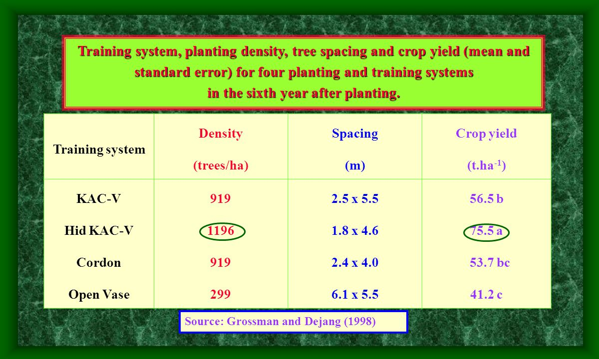 Effect of training system on harvest labor costs (worker – hours/t) during years 3, 4, 5 of production of Ross peach.