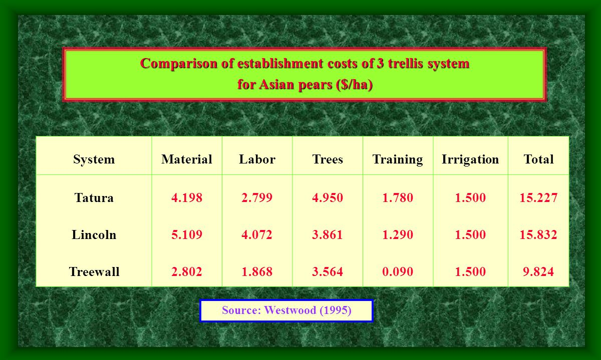 Costs and returns per hectare for central leader and Tatura trellis systems for apple in Australia (values in 1000s U.S.