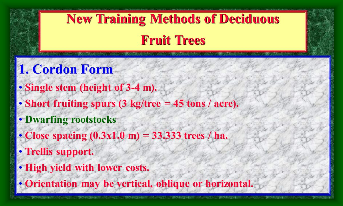 Introduction Many special ways of training trees have been proposed over the past century and before (DeJong et al., 1999).