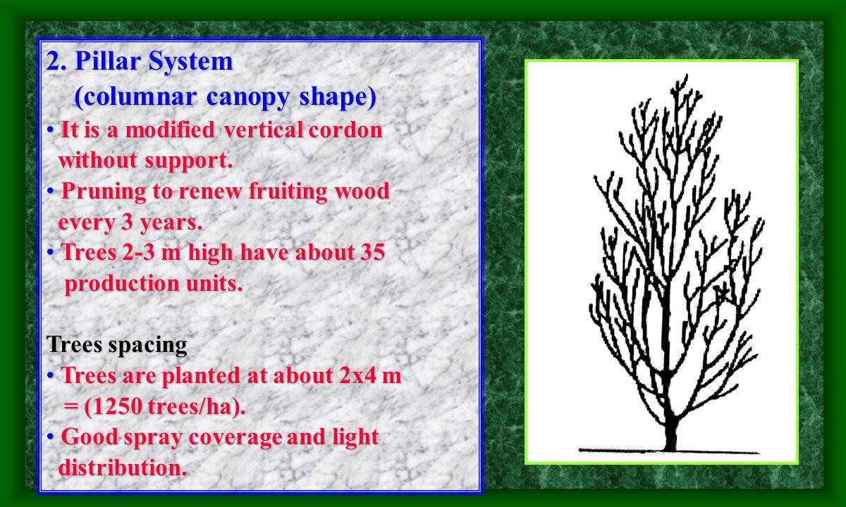 Vertical Cordon Horizontal Cordon Oblique Cordon