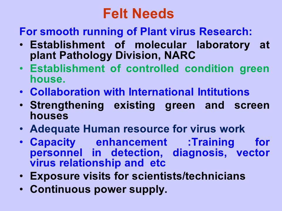 Felt Needs For smooth running of Plant virus Research: Establishment of molecular laboratory at plant Pathology Division, NARC Establishment of contro