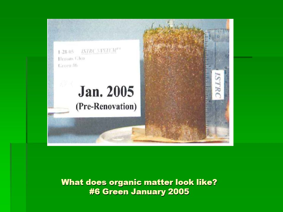 What does organic matter look like? #6 Green January 2005