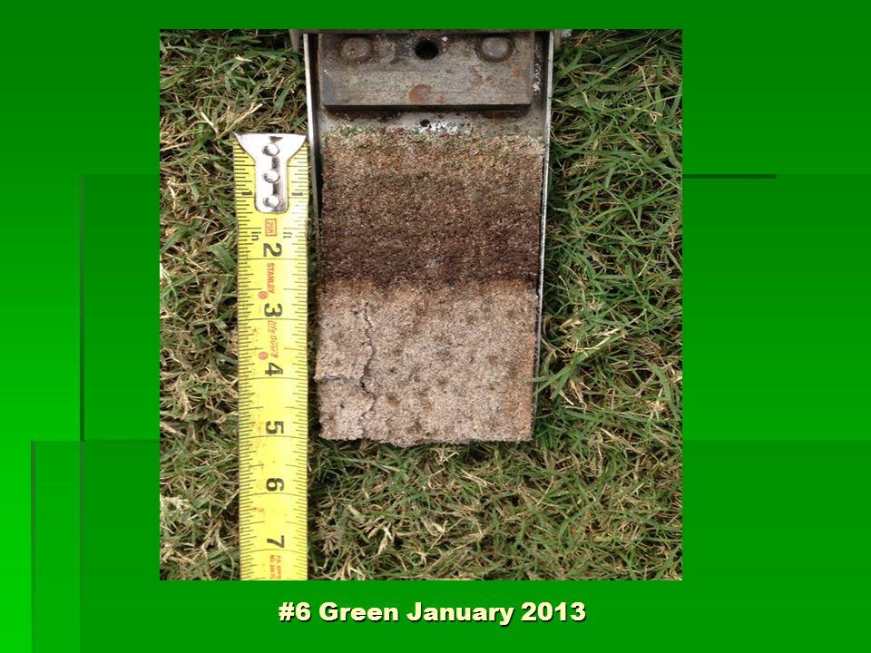 #6 Green January 2013