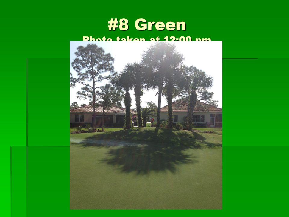 #8 Green Photo taken at 12:00 pm