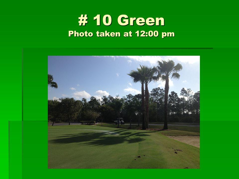 # 10 Green Photo taken at 12:00 pm