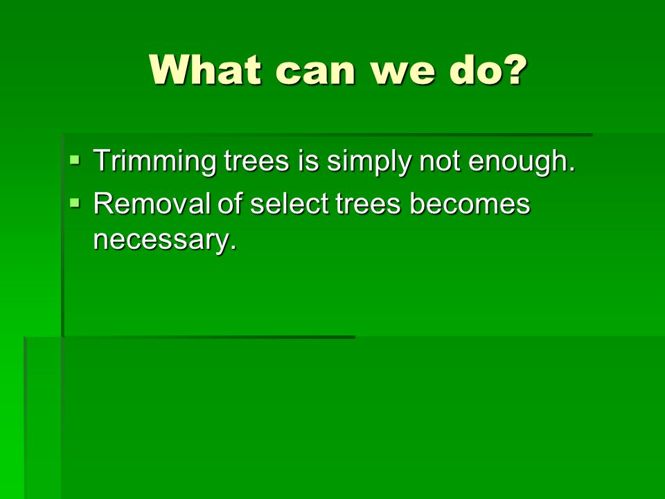 What can we do?  Trimming trees is simply not enough.  Removal of select trees becomes necessary.