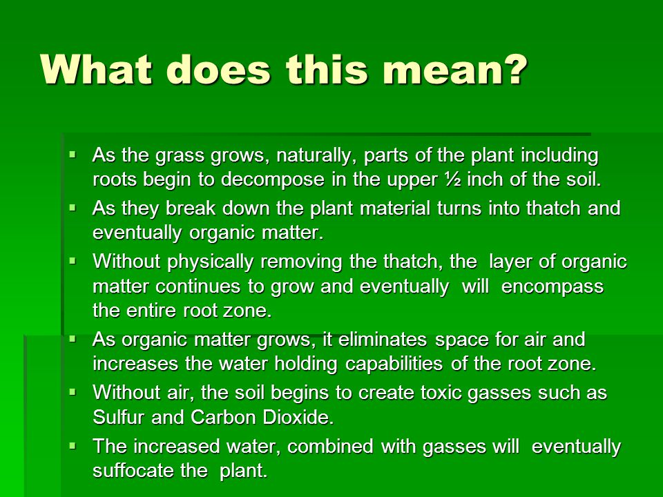 What does this mean?  As the grass grows, naturally, parts of the plant including roots begin to decompose in the upper ½ inch of the soil.  As they