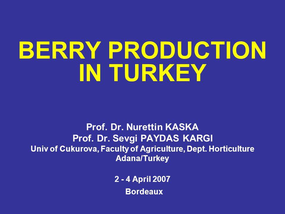 BERRY PRODUCTION IN TURKEY Prof. Dr. Nurettin KASKA Prof. Dr. Sevgi PAYDAS KARGI Univ of Cukurova, Faculty of Agriculture, Dept. Horticulture Adana/Tu