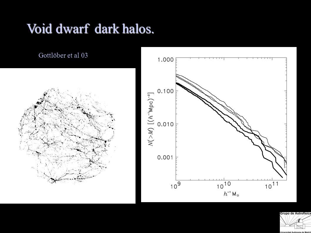 Void dwarf dark halos. Gottlöber et al 03 Void dwarf galax