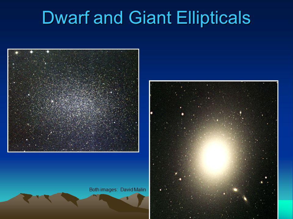 Dwarf and Giant Ellipticals Both images: David Malin