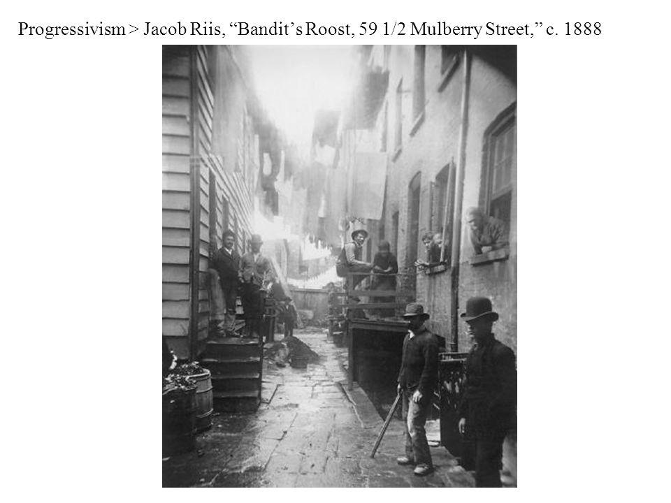 Progressivism > Jacob Riis, Bandit's Roost, 59 1/2 Mulberry Street, c. 1888