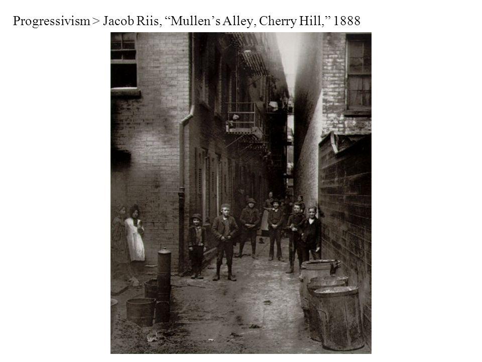 Progressivism > Jacob Riis, Mullen's Alley, Cherry Hill, 1888