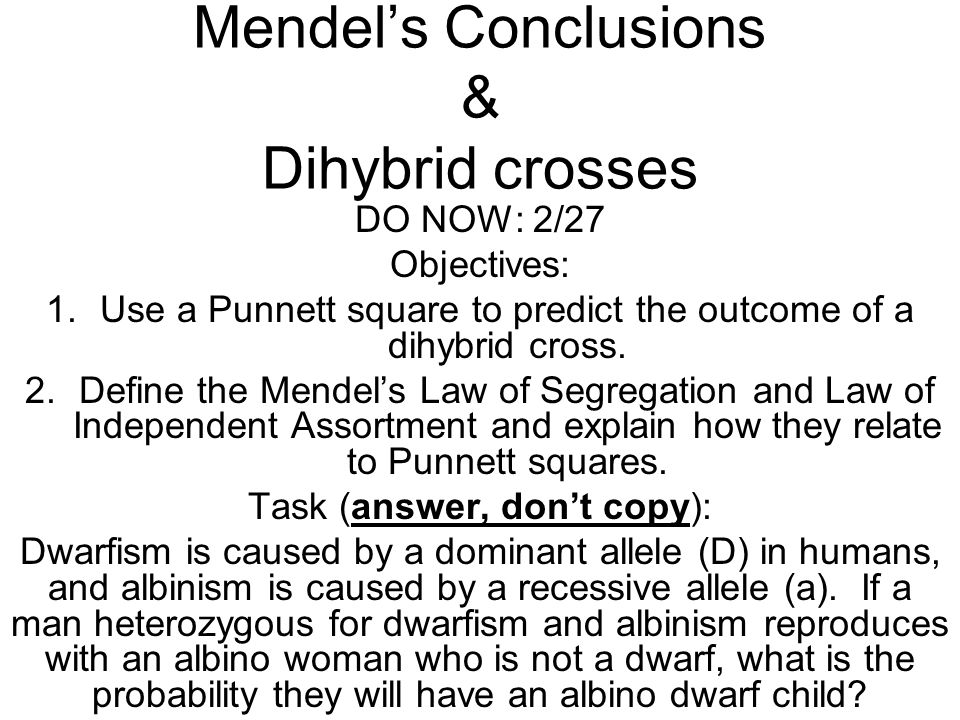 Mendel's Conclusions & Dihybrid crosses DO NOW: 2/27 Objectives: 1.Use a Punnett square to predict the outcome of a dihybrid cross. 2.Define the Mende