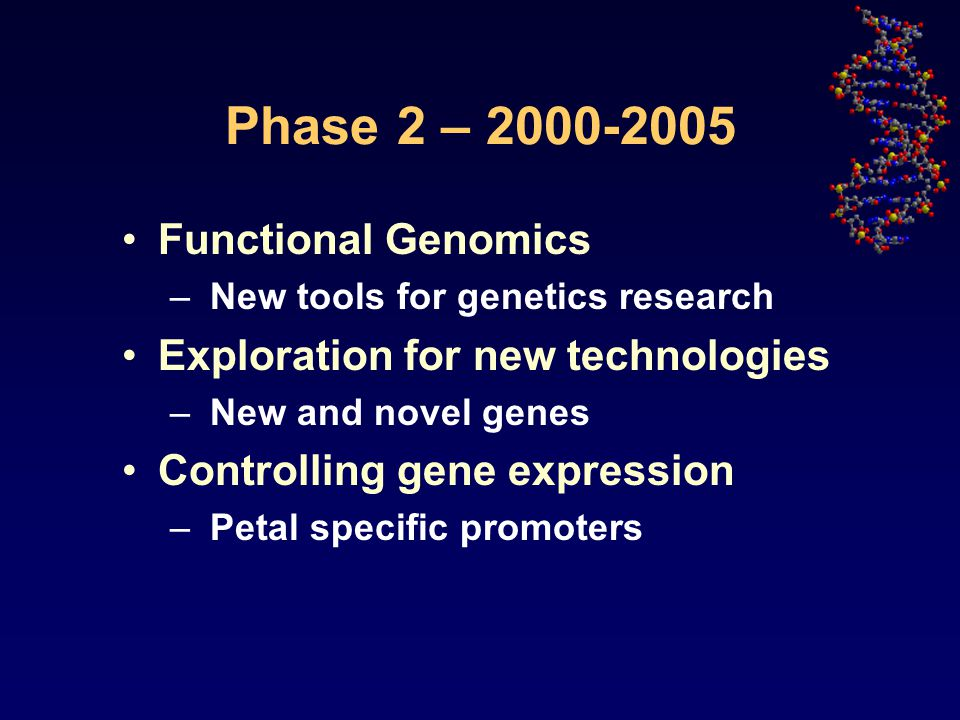 Phase 2 – 2000-2005 Functional Genomics – New tools for genetics research Exploration for new technologies – New and novel genes Controlling gene expression – Petal specific promoters