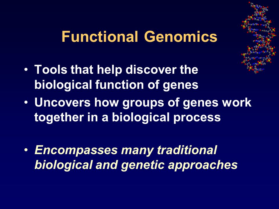 Functional Genomics Tools that help discover the biological function of genes Uncovers how groups of genes work together in a biological process Encompasses many traditional biological and genetic approaches