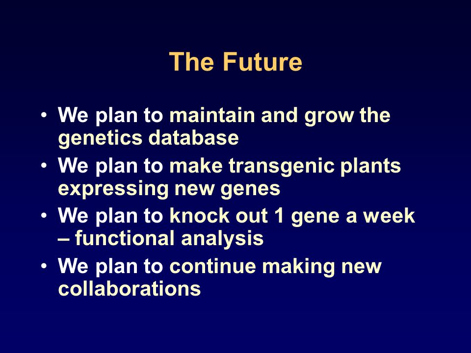 The Future We plan to maintain and grow the genetics database We plan to make transgenic plants expressing new genes We plan to knock out 1 gene a week – functional analysis We plan to continue making new collaborations