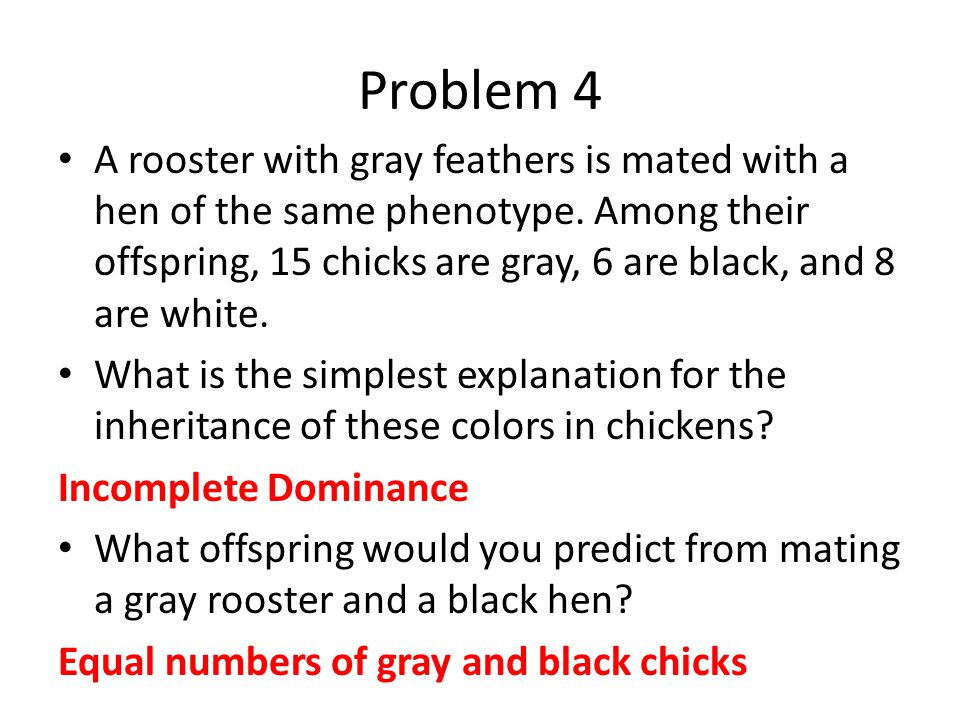 Problem 5 1/64 1/8 1/32