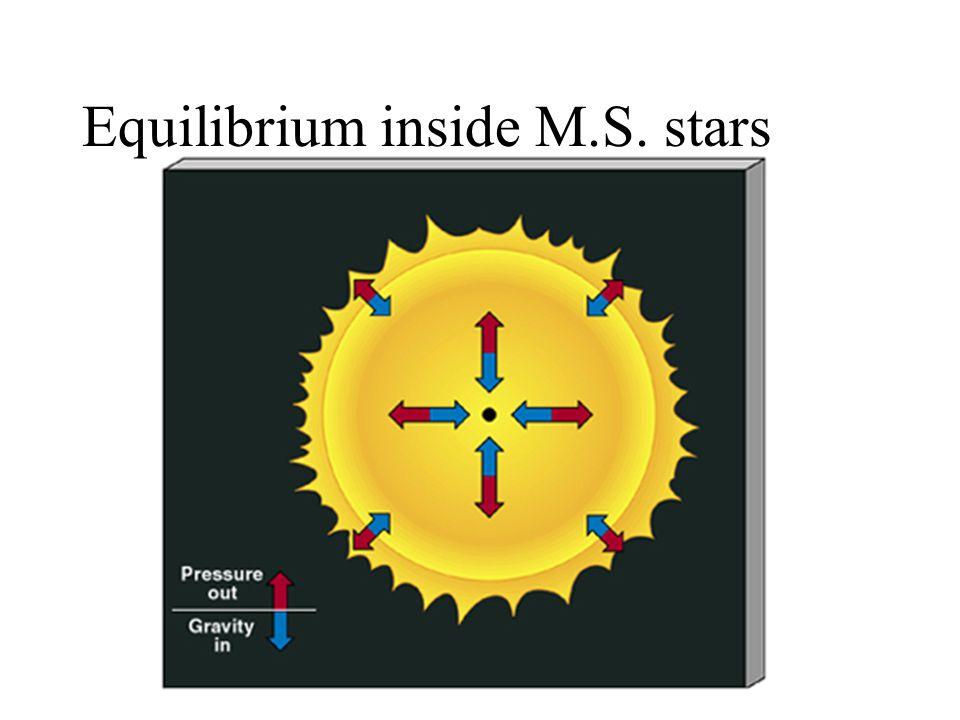 Equilibrium inside M.S. stars