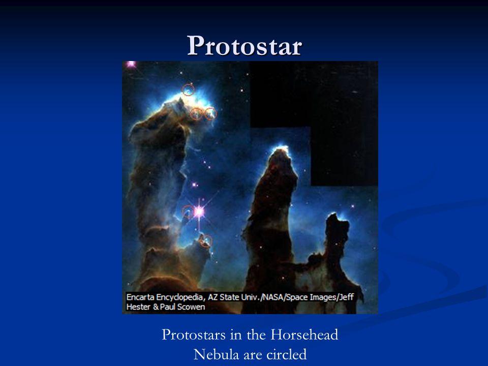 Protostar Protostars in the Horsehead Nebula are circled