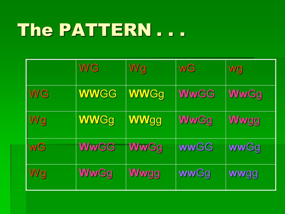 The PATTERN...