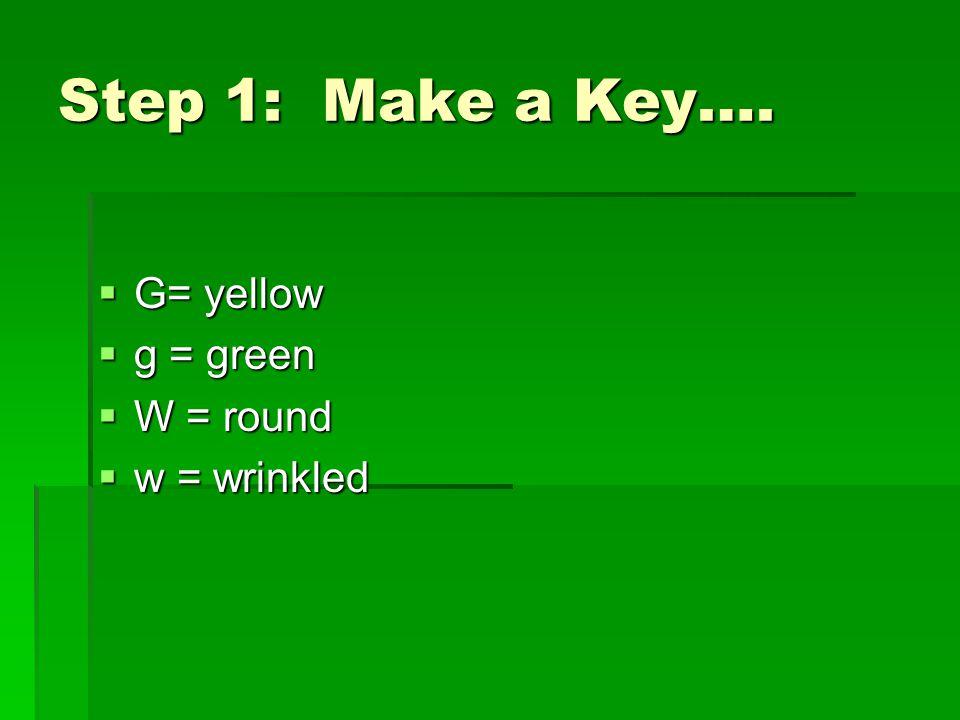 Step 1: Make a Key….  G= yellow  g = green  W = round  w = wrinkled