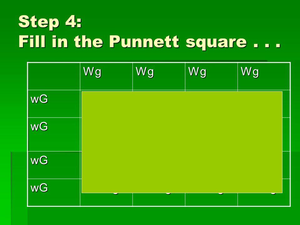 Step 4: Fill in the Punnett square...