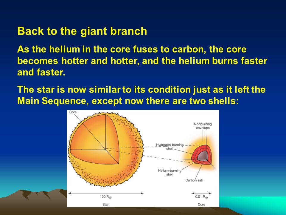 Back to the giant branch As the helium in the core fuses to carbon, the core becomes hotter and hotter, and the helium burns faster and faster. The st