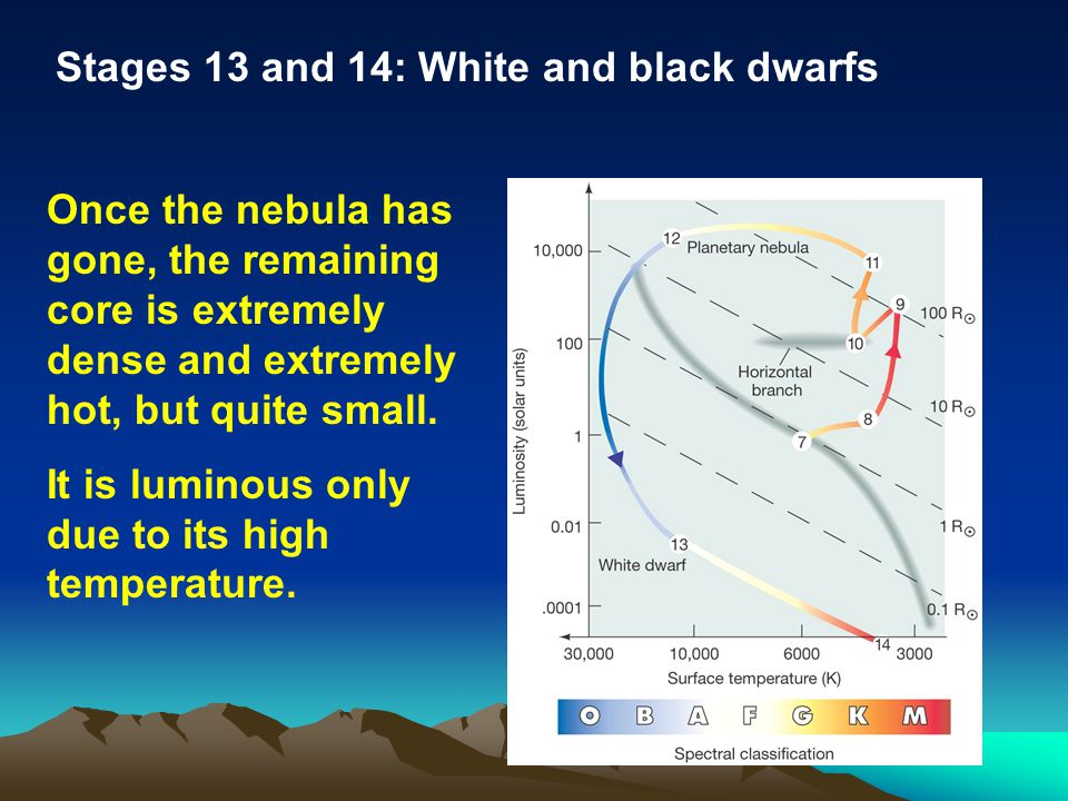 Stages 13 and 14: White and black dwarfs Once the nebula has gone, the remaining core is extremely dense and extremely hot, but quite small. It is lum