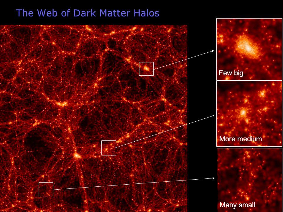 The Web of Dark Matter Halos Few big More medium Many small
