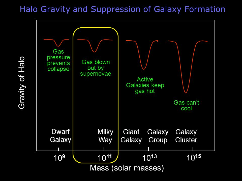 Halo Gravity and Suppression of Galaxy Formation Mass (solar masses) Gravity of Halo Milky Way Giant Galaxy Dwarf Galaxy Group Galaxy Cluster Gas can't cool Active Galaxies keep gas hot Gas blown out by supernovae Gas pressure prevents collapse