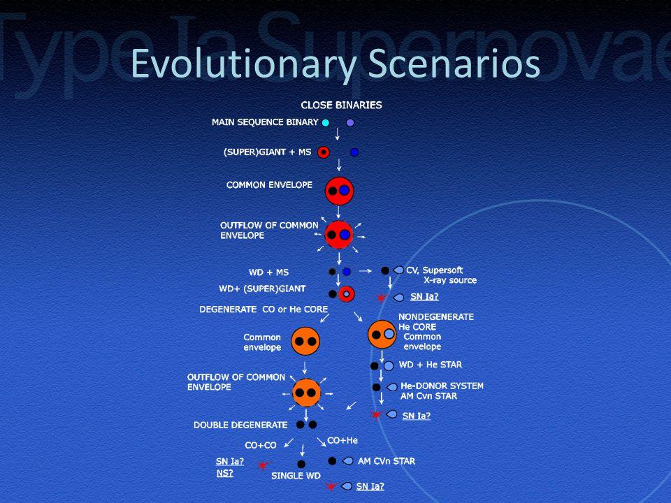 Evolutionary Scenarios