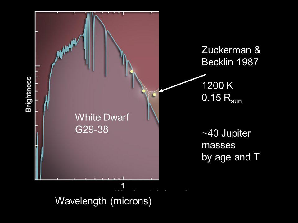 Wavelength (microns) White Dwarf G29-38 Zuckerman & Becklin 1987 1200 K 0.15 R sun ~40 Jupiter masses by age and T