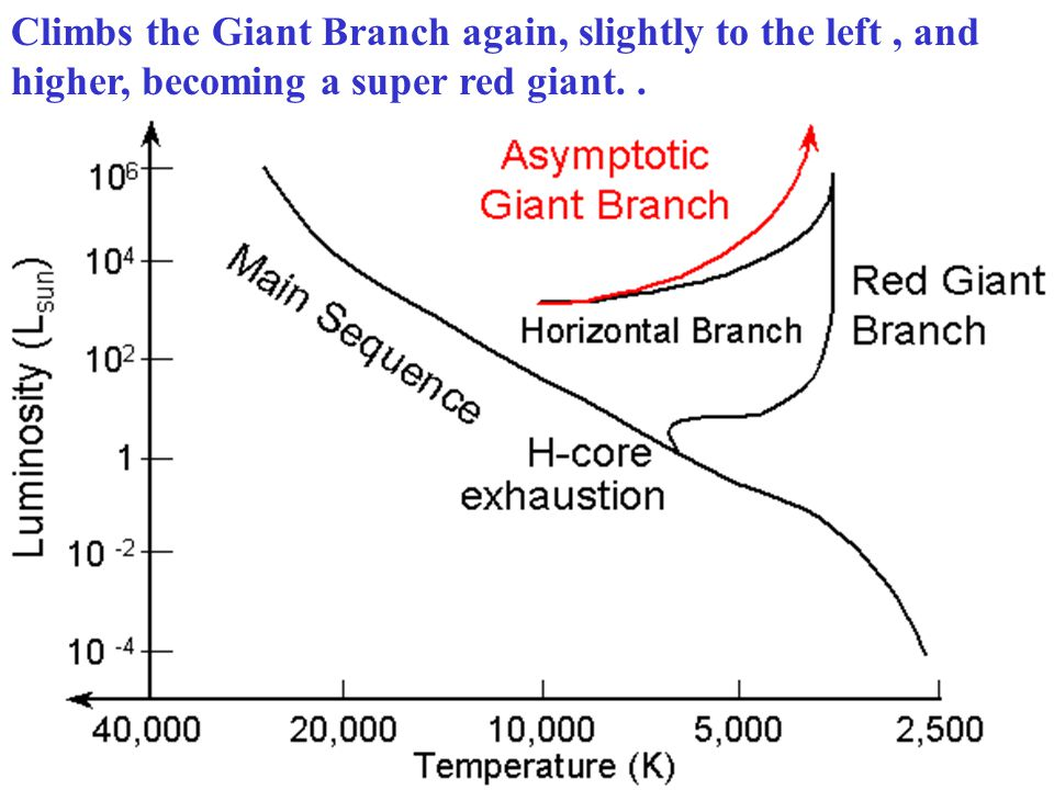 C-O core collapses and heats up He burning shell outside the C-O core H burning shell outside the He burning shell The core never gets hot enough to fuse the Carbon & Oxygen Outside: Envelope swells &cools because of H & He burning Climbs the Asymptotic Giant Branch Once the He fuses and forms C & O, the core contracts.