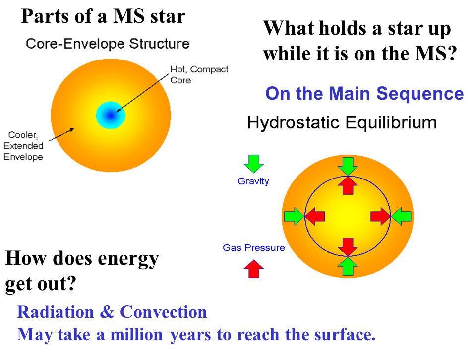 Evolution of High-Mass Stars High-Mass Stars O & B Stars core mass >1.4 and <3 M sun Burn Hot Live Fast Die Young Main Sequence Phase: Burn H to He in core using the CNO cycle Build up a He core, like low-mass stars But this lasts for only ~ 10 Myr