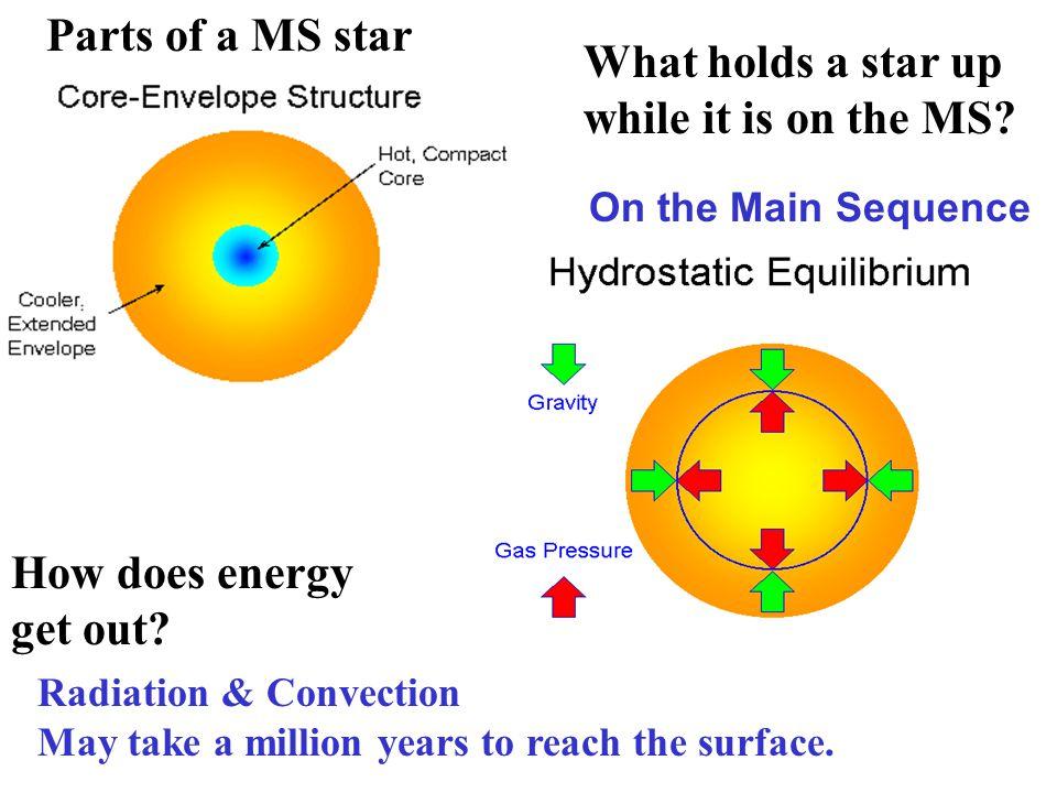 White Dwarf's mass < than the Chandrasekhar mass (1.4 Solar Mass) Radius (a little smaller than Earth!) Temp.