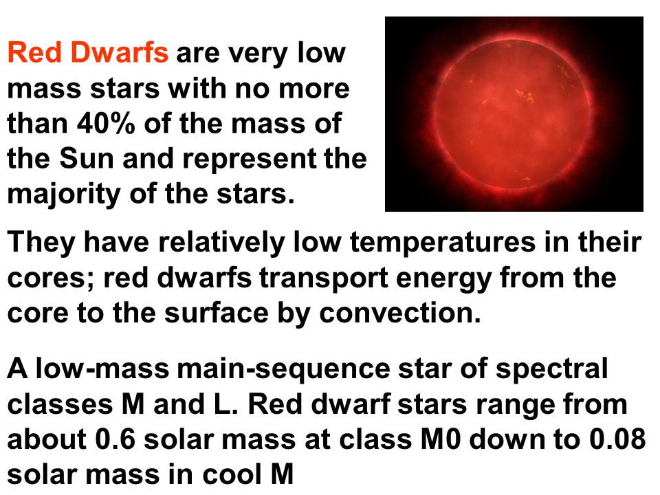 Red Dwarfs : Stars with a core mass of.08 to 0.4 solar mass Coolest and dimmest of all MS stars. They remain on MS hundreds of billions of years. When