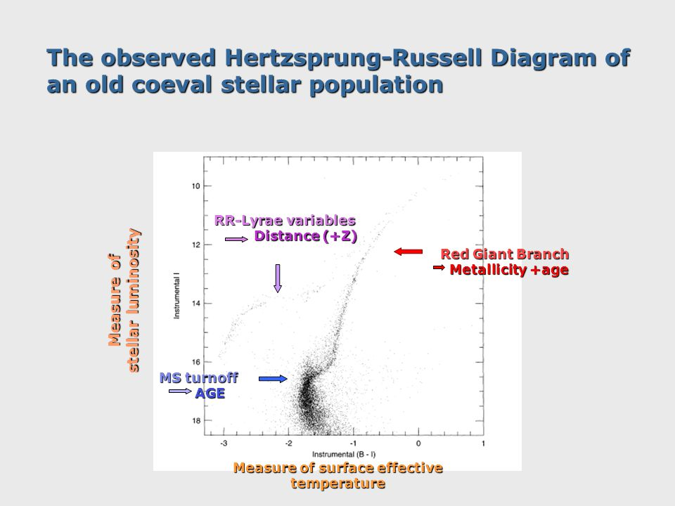 The observed Hertzsprung-Russell Diagram of an old coeval stellar population Measure of stellar luminosity Measure of surface effective temperature MS turnoff AGE AGE Red Giant Branch Metallicity +age Metallicity +age RR-Lyrae variables Distance (+Z) Distance (+Z)