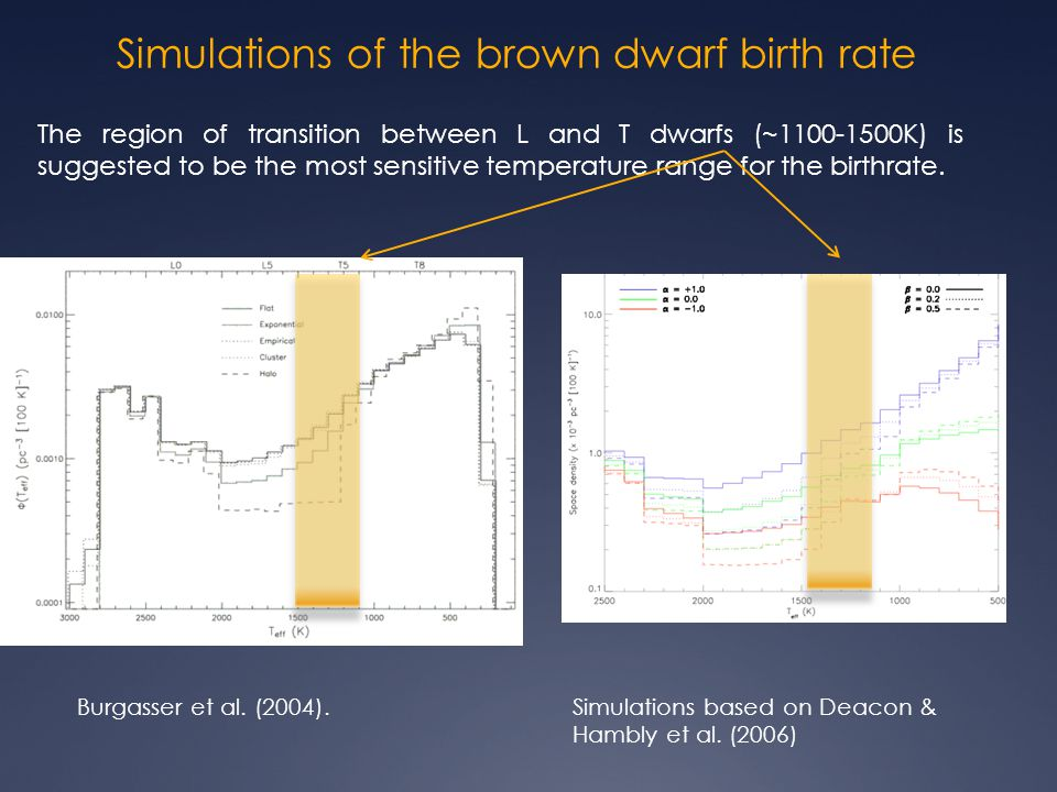 Simulations of the brown dwarf birth rate Burgasser et al.