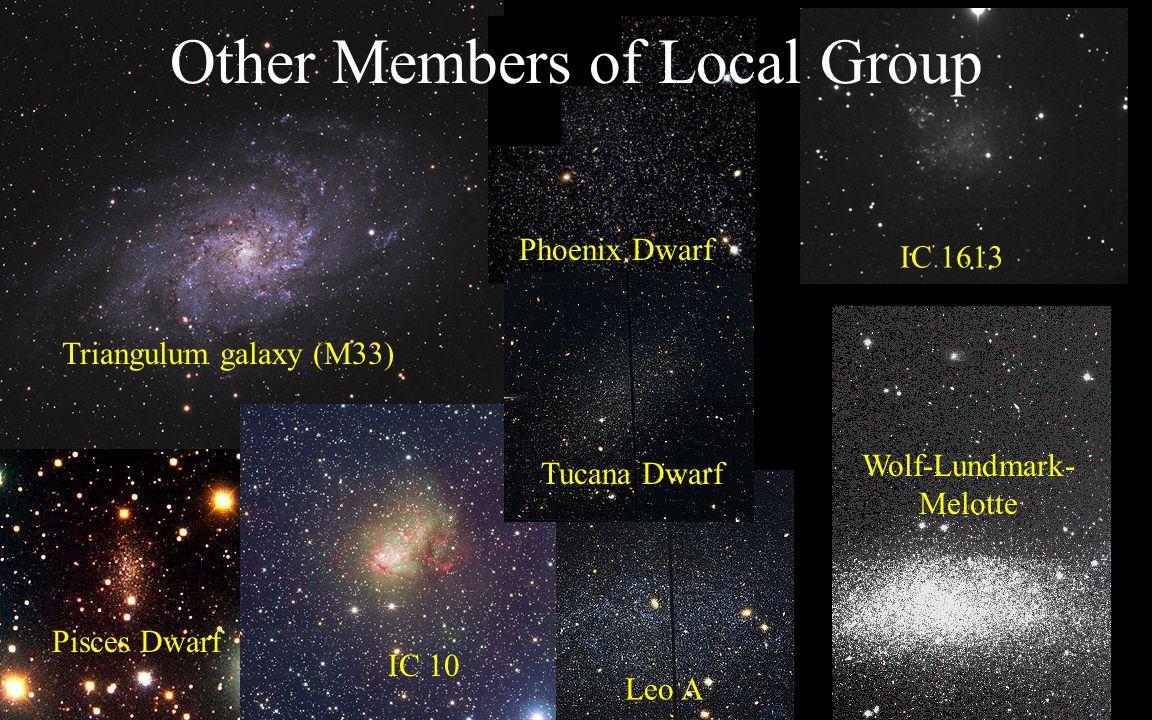 Triangulum galaxy (M33) Pisces Dwarf Phoenix Dwarf Leo A IC 10 IC 1613 Other Members of Local Group Tucana Dwarf Wolf-Lundmark- Melotte