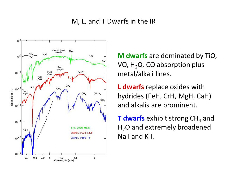 M dwarfs are dominated by TiO, VO, H 2 O, CO absorption plus metal/alkali lines.