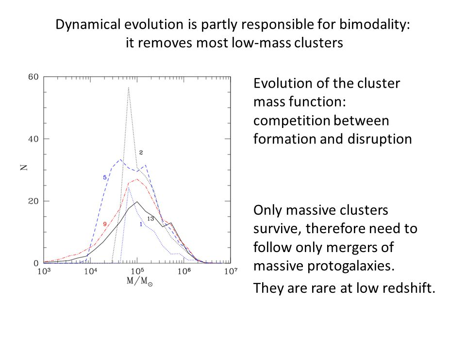 Dynamical evolution is partly responsible for bimodality: it removes most low-mass clusters Evolution of the cluster mass function: competition between formation and disruption Only massive clusters survive, therefore need to follow only mergers of massive protogalaxies.