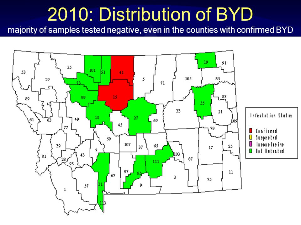 2010: Distribution of BYD majority of samples tested negative, even in the counties with confirmed BYD